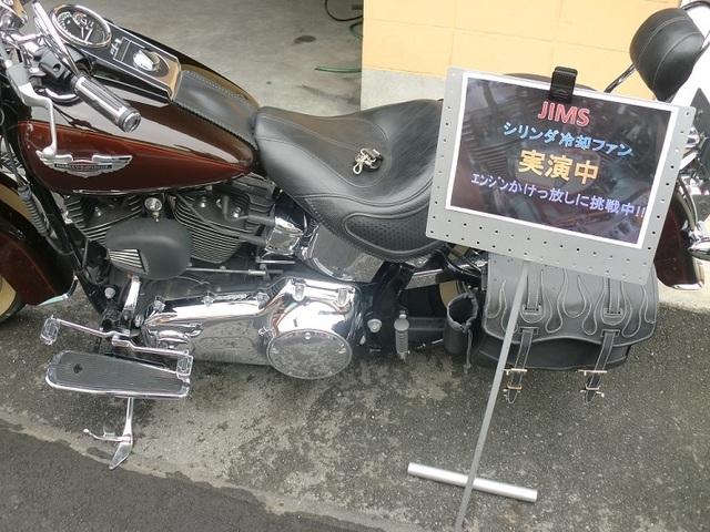 CIMG8131.JPG